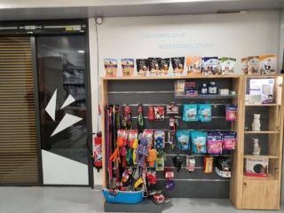 Accessoires et jouets pour animaux